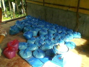 Rice weighed, rebagged and prepared for distribution to families at barangay Obujan.